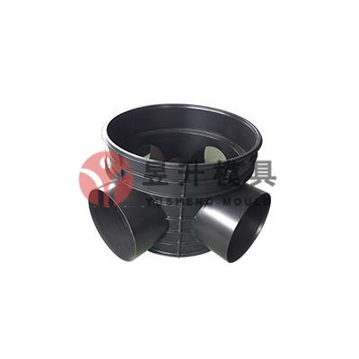 HDPE Other fitting mold 07